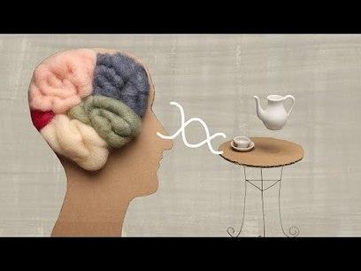 What Is Alzheimer's Disease